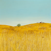 DUANE ALBERT ARMSTRONG (American, b. 1938) Landscape with Wheat, 1968 Oil on canvas 50 x 50 inche