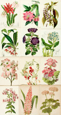 Books:Prints & Leaves, [Botanical Illustration]. Group of Eighty Color Plates DepictingVarious Types of Flowers, Many with Hand-Coloring. Vari...
