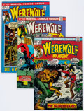 Bronze Age (1970-1979):Horror, Werewolf by Night Group of 16 (Marvel, 1972-74) Condition: AverageFN.... (Total: 16 Comic Books)