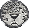 Ancients:Judaea, Ancients: JUDAEA. The Jewish War (AD 66-70). AR shekel (23mm, 14.13 gm, 12h)....