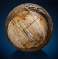 Fossils:Paleobotany (Plants), Decorative Sequoia Petrified Wood Sphere. Sequoiadendron.Eocene. Oregon, USA. ...
