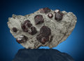 Minerals:Cabinet Specimens, Almandine Garnet . Arandis, Swakopmund District, Erongo Region,Namibia. ...