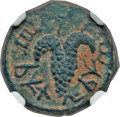 Ancients:Judaea, Ancients: JUDAEA. Bar Kokhba Revolt (AD 132-135). Æ small bronze(20mm, 4.31 gm). ...