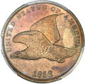 1858 P1C Flying Eagle Cent, Judd-193, Pollock-236, Snow-PT11a, R.5 -- Spot Removed -- PCGS Genuine. Unc Details....(PCGS...