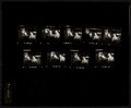 "Movie Posters:James Bond, From Russia with Love (United Artists, 1964). Photo Contact Sheets (56) (8"" X 10"").. ... (Total: 56 Items)"