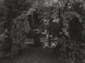 Photographs:Gelatin Silver, Josef Sudek (Czechoslovakian, 1896-1976). Hushed Stillness in the Magic Garden. Gelatin silver, circa 1962. 7 x 9 inches...