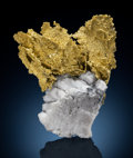 Minerals:Cabinet Specimens, Native Gold on Quartz. Presumed to be California . ...