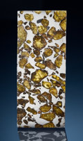 Meteorites:Palasites, Imilac Meteorite - Partial Slice of Meteorite with ExtraterrestrialGemstones and Exceptional Provenance . PAL - Pallasite...