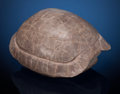 Fossils:Amphibians & Reptiles, Fossil Turtle. Stylemys nebrascensis. Oligocene. White RiverBadlands, South Dakota, USA. ...