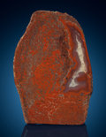 "Lapidary Art:Carvings, Polished ""Gem"" Red Dinosaur Bone Slab. Jurassic, MorrisonFormation. Utah, USA. ..."