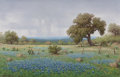 , Don Warren (American, 1935-2006). Bluebonnets in TexasThunderstorm. Oil on canvas. 24 x 36 inches (61.0 x 91.4 cm).Sig...
