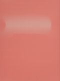 Photographs:20th Century, Sam Falls (American, b. 1985). Untitled (Pink Roll), 2011.Paper. 25-1/2 x 19-1/4 inches (64.8 x 48.8 cm). ...