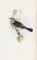 Books:Color-Plate Books, [Ornithology]. John Gould. The Birds of Europe. Vol. II. Insessores. London: Printed by Richard and John E. Taylor, ...