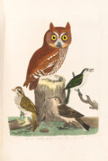 Books:Color-Plate Books, Alexander Wilson. American Ornithology; or The Natural Historyof the Birds of the United States. With a Sketch of...(Total: 4 Items)