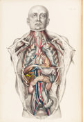 Books:Medicine, [Anatomy]. Francis Sibson. Medical Anatomy: or, Illustrations ofthe Relative Position and Movements of the Internal Org...