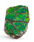 Fossils:Cepholopoda, Ammolite Fossil. Placenticeras sp.. Cretaceous, BearpawFormation. Southern Alberta, Canada. 1.83 x 1.23 x 0.29 inches(4....