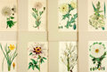 Books:Prints & Leaves, [Botanical Illustration]. Group of Eight Color Plates withHand-Coloring Depicting Various Flowering Plants. Variouspublish...