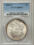 Morgan Dollars: , 1902-O $1 MS66+ PCGS. PCGS Population (591/20). NGC Census: (595/24). Mintage: 8,636,000. Numismedia Wsl. Price for problem...