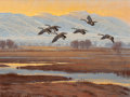 Fine Art - Painting, American:Contemporary   (1950 to present)  , James Morgan (American, b. 1947). Geese in Flight. Oil onmasonite. 18 x 24 inches (45.7 x 61 cm). Signed lower right: ...
