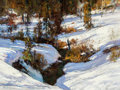 Fine Art - Painting, American:Contemporary   (1950 to present)  , Cyrus Afsary (American, b. 1940). Shadows in the Snow. Oilon canvas. 18 x 24 inches (45.7 x 61 cm). Signed and inscribe...