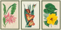 Fine Art - Work on Paper:Print, After Sydenham Teast Edwards. Edward's Botanical Register(eighteen works). Engravings with hand coloring on paper, each...(Total: 6 Items)