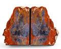 Fossils:Paleobotany (Plants), Petrified Wood Bookends. Araucarioxylon arizonicum. Triassic.Chinle Formation. Arizona, USA. 6.54 x 1.77 x 4.33 inches (1...(Total: 2 Items)