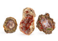Fossils:Dinosauria, Set of 3 Dinosaur Coprolites. 5.00 x 2.79 x 1.18 inches (12.71 x7.09 x 3.00 cm). ... (Total: 3 Items)