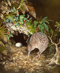 Fine Art - Painting, American:Contemporary   (1950 to present)  , Jeanette Blackburn (New Zealander, b. 1940). Little SpottedKiwi. Oil on canvasboard. 18 x 15 inches (45.7 x 38.1 cm). S...