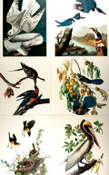 Books:Natural History Books & Prints, [Ornithology]. Group of Six Modern Prints after Nineteenth-Century Designs. [N.p., n.d., Circa 1970]. . ...