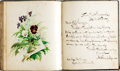 Books:Manuscripts, Nineteenth-Century Friendship Album for Libbie H. Hogge.Commercially published blank album, filled with manuscripttributes...