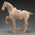 Asian:Chinese, A Chinese Painted Pottery Model of Saddled Horse, Tang Dynasty . 18inches high (45.7 cm). ...