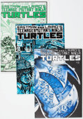 Modern Age (1980-Present):Superhero, Teenage Mutant Ninja Turtles-Related Group of 21 (Mirage Studios,1980s-2000s) Condition: Average VF-.... (Total: 21 Comic Books)