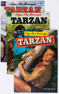 Golden Age (1938-1955):Adventure, Tarzan Group of 17 (Dell, 1953-59) Condition: Average FN.... (Total: 17 Comic Books)
