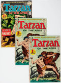 Bronze Age (1970-1979):Adventure, Tarzan #207 and 208 Multiple Copies Group of 14 (DC, 1972) Condition: Average VF.... (Total: 14 Comic Books)