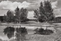 Photographs:Gelatin Silver, André Kertész (Hungarian, 1894-1985). Cimarron, New Mexico, August 11, 1970. Gelatin silver, printed later. 6-1/2 x 9-3/...