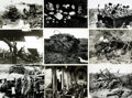 Books:Prints & Leaves, [WWI: Ground Campaign]. Archive of Approximately 140 PhotographsRelating to the Ground Campaign During World War One....
