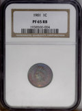 1901 1C PR65 Red and Brown NGC. NGC Census: (54/30). PCGS Population (65/23).Mintage: 1,985. Numismedia Wsl. Price: $420...