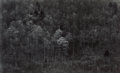 Photographs, Paul Caponigro (American, b. 1932). Forest. Gelatin silver. 8-1/8 x 13-1/4 inches (20.6 x 33.7 cm). Signed in pencil mou...