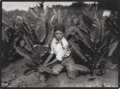 Photographs:Gelatin Silver, Lewis Wickes Hine (American, 1874-1940). Child Labor (Boy &Tobacco Plants), 1916. Gelatin silver, printed later. 4-3/4 ...