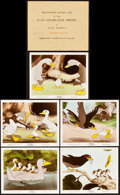 "Movie Posters:Animation, The Ugly Duckling (RKO, 1939). Color Glos Photo Set of 5 (8"" X10"").. ... (Total: 5 Items)"