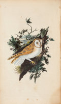 Books:Natural History Books & Prints, E[dward] Donovan. The Natural History of British Birds; or, ASelection of the Most Rare, Beautiful, and Interesting Bir...(Total: 5 Items)