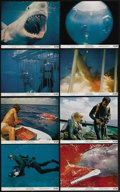 """Movie Posters:Documentary, Blue Water, White Death (National General, 1971). Mini Lobby Card Set of 8 (8"""" X 10""""). This documentary feature starring Pet... (Total: 8 Items)"""