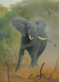 Fine Art - Painting, American:Contemporary   (1950 to present)  , Douglas Allen (American, b. 1935). African Elephant. Oil onmasonite. 30 x 22 inches (76.2 x 55.9 cm). Signed lower righ...