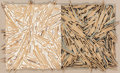 Post-War & Contemporary:Sculpture, Charles Arthur Arnoldi (b. 1946). Untitled, 1985. Branches,acrylic, modeling paste. 26 x 43 inches (66 x 109.2 cm). Sig...