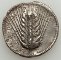 Ancients:Greek, Ancients: LUCANIA. Metapontum. Ca. 540-510 BC. AR stater or nomos(7.59 gm)....