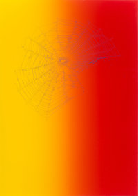 Pae White (b. 1963) Web Sampler #97, 2001 Spider web on colored paper 20-1/2 x 14-1/2 inches (52