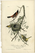 Antiques:Posters & Prints, Orchard Oriole Audubon Royal Octavo Print. Plate number 219 depicts a male, female, and younger male Orchard Oriole, all are...
