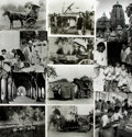 Books:Prints & Leaves, [India]. Collection of Seventy-Nine Photographs and Press PrintsRelating to India....