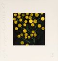 Prints:Contemporary, Donald Sultan (b. 1951). Yellow Peppers, from the Fruitsand Flowers III suite, 1993. Screenprint in colors on wove ...