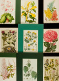 Books:Prints & Leaves, [Botanical Illustration]. Group of 30 Color Plates DepictingVarious Flowering Plants. [Np., n.d.]....